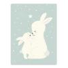 rabbit relation ship